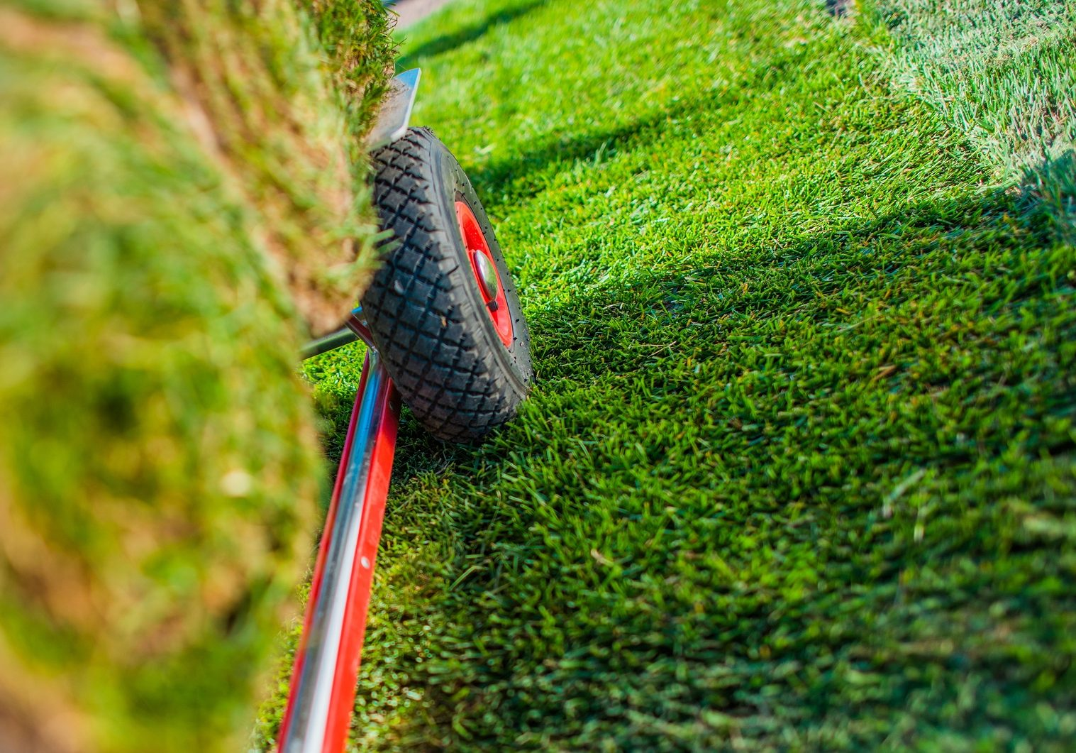 Creating New Grass Field in the Garden. Natural Turf Grass on the Moving Cart Closeup Photo. Landscaping Industry.